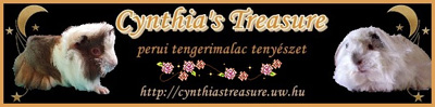 Cynthia's Treasure